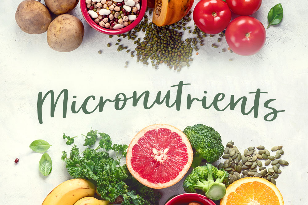 Micronutrients – Why do they matter?